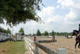 georgia-international-horse-park